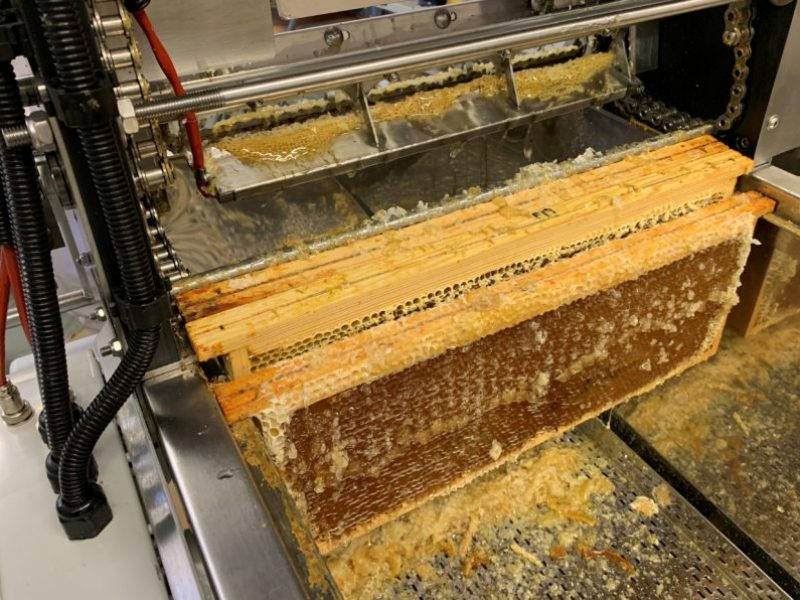 Bees4You extraction miel 2020